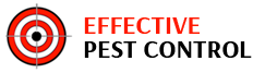 The Pest Control Experts